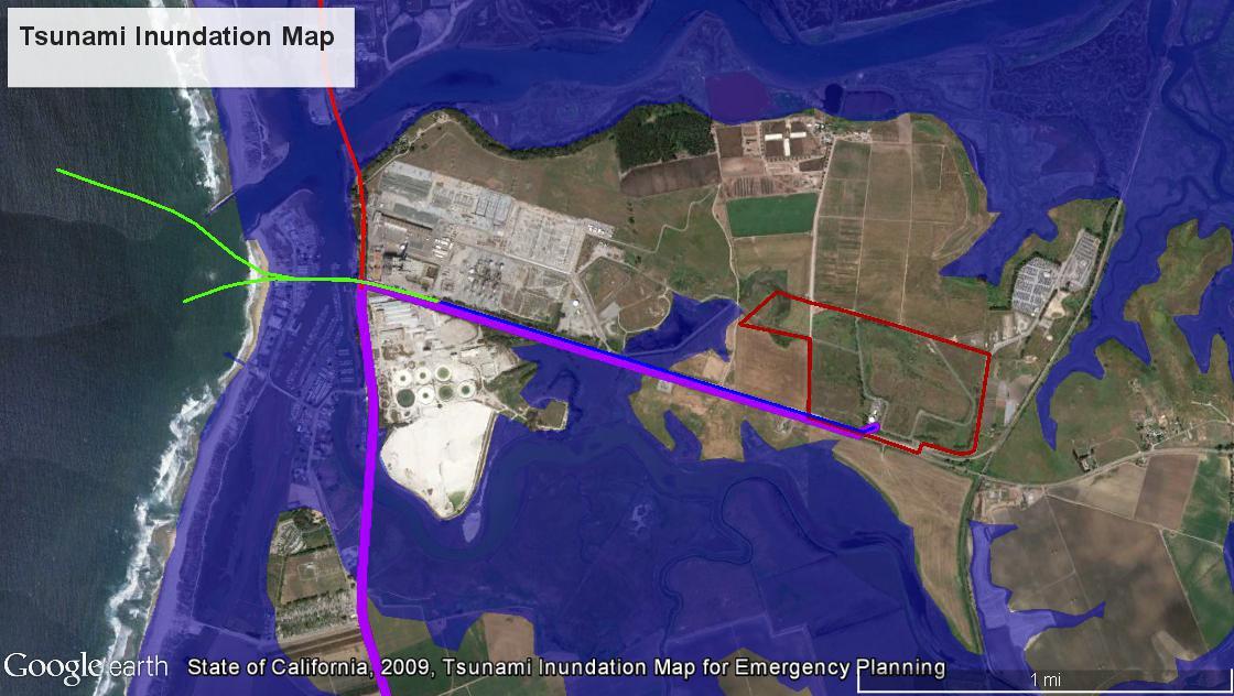 In addition to direct seismic activity tsunami